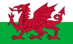 Fanion du club de 'Pays de Galles'